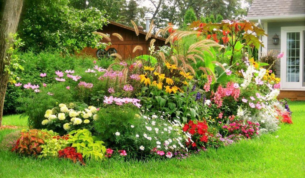 Gartenideen an Ihren Fingerspitzen
